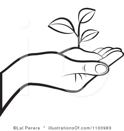 Seeds Clipart Black And White Plant Seed Black And White